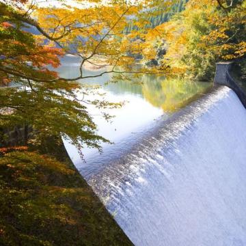 神戸のサプライズプロポーズ 白水ダム