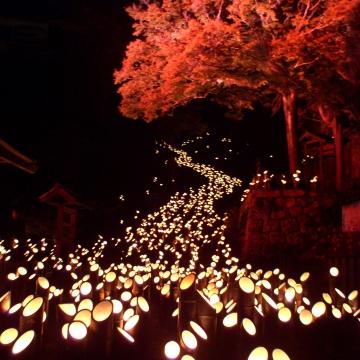 神戸のサプライズプロポーズ たけた竹灯籠 竹楽