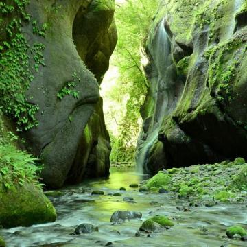 神戸のサプライズプロポーズ 由布川峡谷