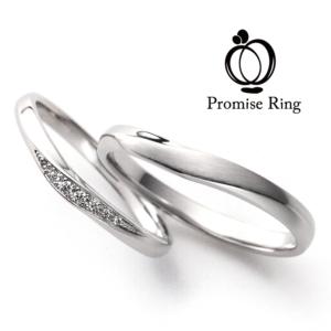 Promise of TRUST