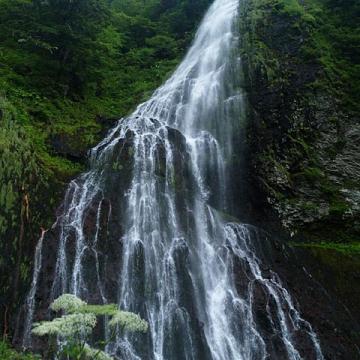 神戸のサプライズプロポーズ 百間滝