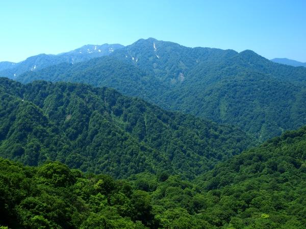 神戸のサプライズプロポーズ 白神山地