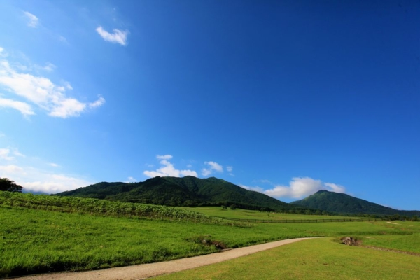 蒜山高原|岡山県プロポーズスポット