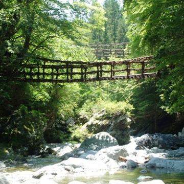 神戸のサプライズプロポーズ 奥祖谷二重かずら橋