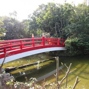 大阪gardenのサプライズプロポーズ 伊弉諾神宮