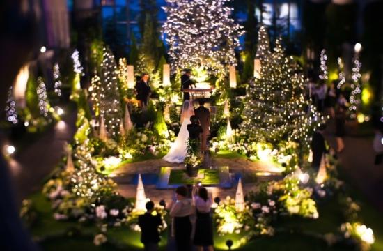 神戸のサプライズプロポーズ 淡路夢舞台温室 奇跡の星の植物館
