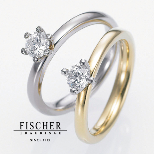FISCHER 9750620/9750301 picture
